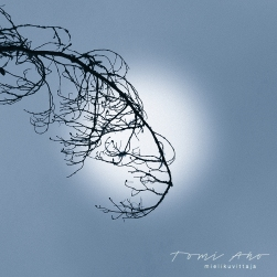 puun oksa epäterävää kuuta vasten